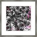 Abstract Of Ever Green Bush Framed Print