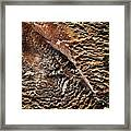 Abstract Surface Bumpy Stone Framed Print