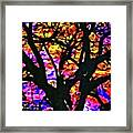 Abstract Tree 304 Framed Print