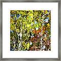 Abstract Tree Reflection Framed Print