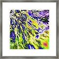 Abstract Wildflower 5 Framed Print