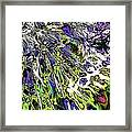 Abstract Wildflower 6 Framed Print