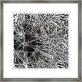 Abstract Wildflower 7 Framed Print