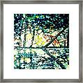 Along The Tittabawassee River Framed Print