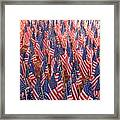 American Flags In Tampa Framed Print