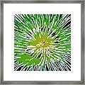 An Abstract Scene Of Sea Anemone 2 Framed Print