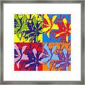 Andy's Lillies Framed Print