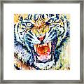 Angry Tiger Watercolor Close-up Framed Print