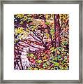 Another Look At Five Mile Mountain Framed Print