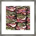 Garlands Of Apple Spice Potpourri Framed Print
