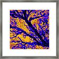 Arboreal Plateau 7 Framed Print