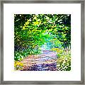 Art Rendered Country Pathway Framed Print