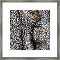 Art Within A Tree Framed Print