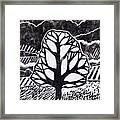Ash Tree Framed Print