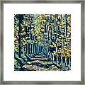 Aspen Path Framed Print