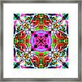 Astra Rose Framed Print