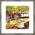 At Forest Park Framed Print