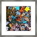 Autumn B 2015 124 Framed Print