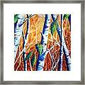 Autumn Birch Framed Print