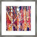 Autumn Birches Framed Print