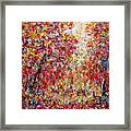 Autumn Brilliance Framed Print