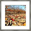 Autumn Colors 02 Framed Print