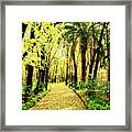 Autumn Corridor Framed Print