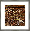 Autumn Has Come Framed Print