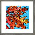 Autumn Leaves 14 Framed Print