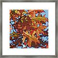 Autumn Leaves 17 - Variation  2 Framed Print