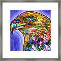 Bald Eagle Face Framed Print