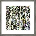 Bamboo Sprouts Forest Framed Print