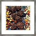Barbecue ... Framed Print