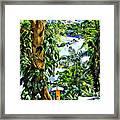 Bay View Tobago Framed Print