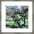 Beautiful Japanese Garden,butchart Gardens,victoria,canada 2. Framed Print