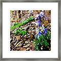 Beauty Elevated Framed Print