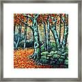 Beech Woods Framed Print