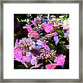 Between Darkness And Light 2017 004 Framed Print