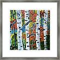 Birch Tree's Framed Print