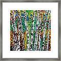 Birches And Scrub Framed Print