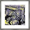 Blacky Bear Forest Framed Print