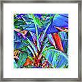 Bleu Banana Framed Print