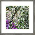 Blossoms Galore Framed Print