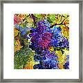 Blue Grapes Framed Print