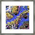 Blueberry Mash Framed Print