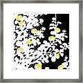 Branches Of White Yellow Leaves And Flowers At Night, Black Background Framed Print