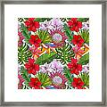 Brightly Colored Tropical Flowers And Ferns  Framed Print
