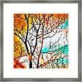 Brushfire Framed Print