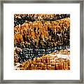 Bryce Canyon Series #3 Framed Print