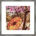 Burmese Spring Framed Print